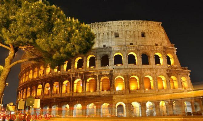 Gigolo Di Roma